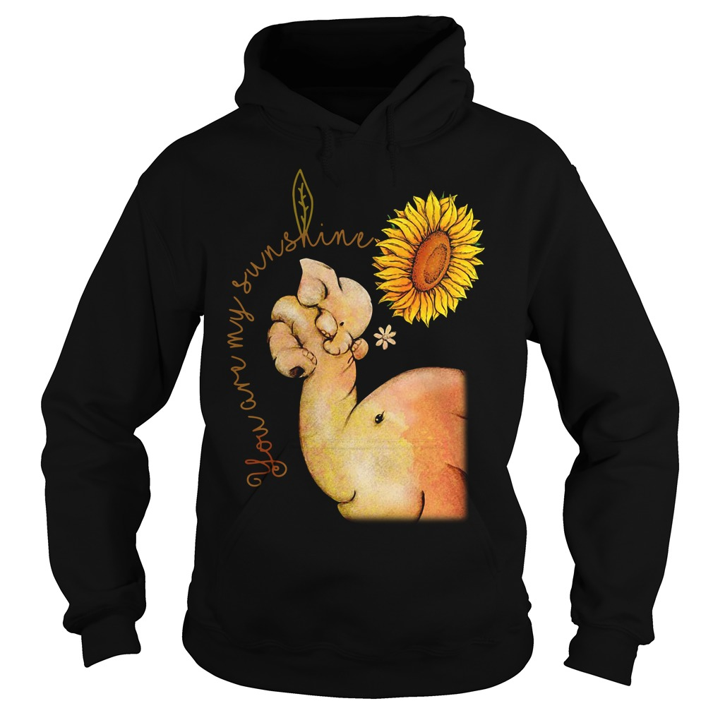 Elephant mom and baby you are my sunshine Hoodie