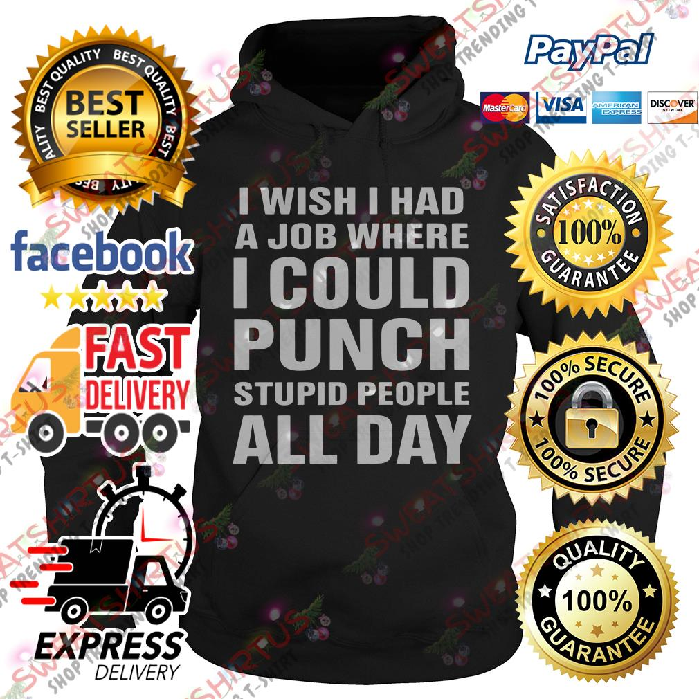 I wish I had a job where I could punch stupid people all day Hoodie