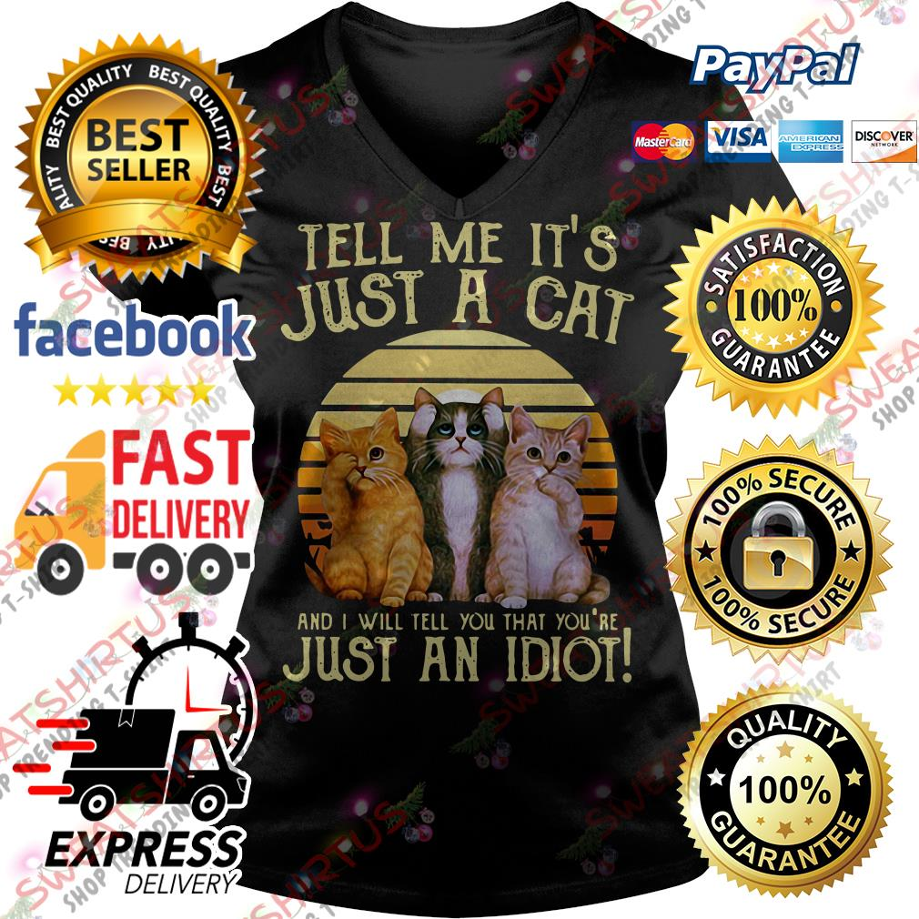 Tell me it's just a cat and I will tell you that you're just an idiot vintage V-neck T-shirt