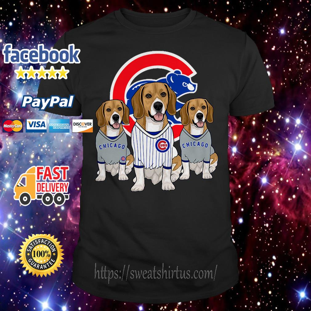 Beagle dog Chicago Cubs shirt