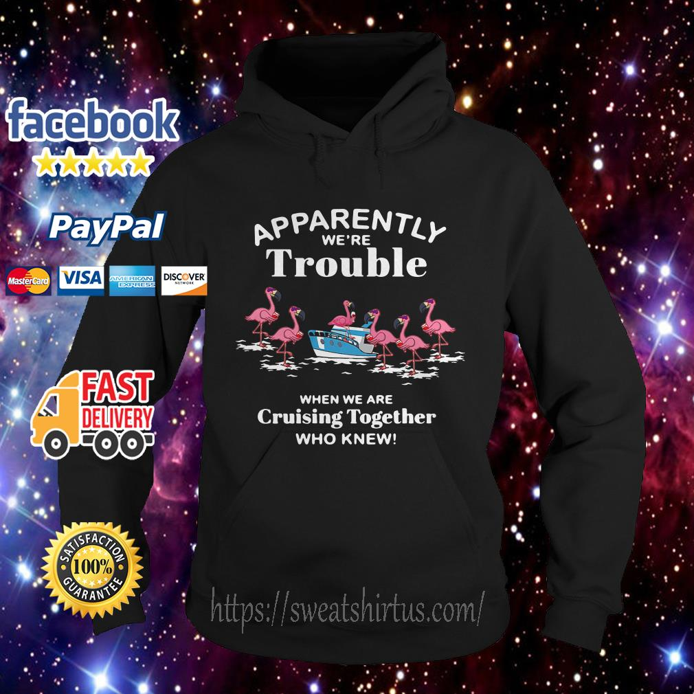 Flamingos apparently we're trouble when we are cruising together who knew hoodie