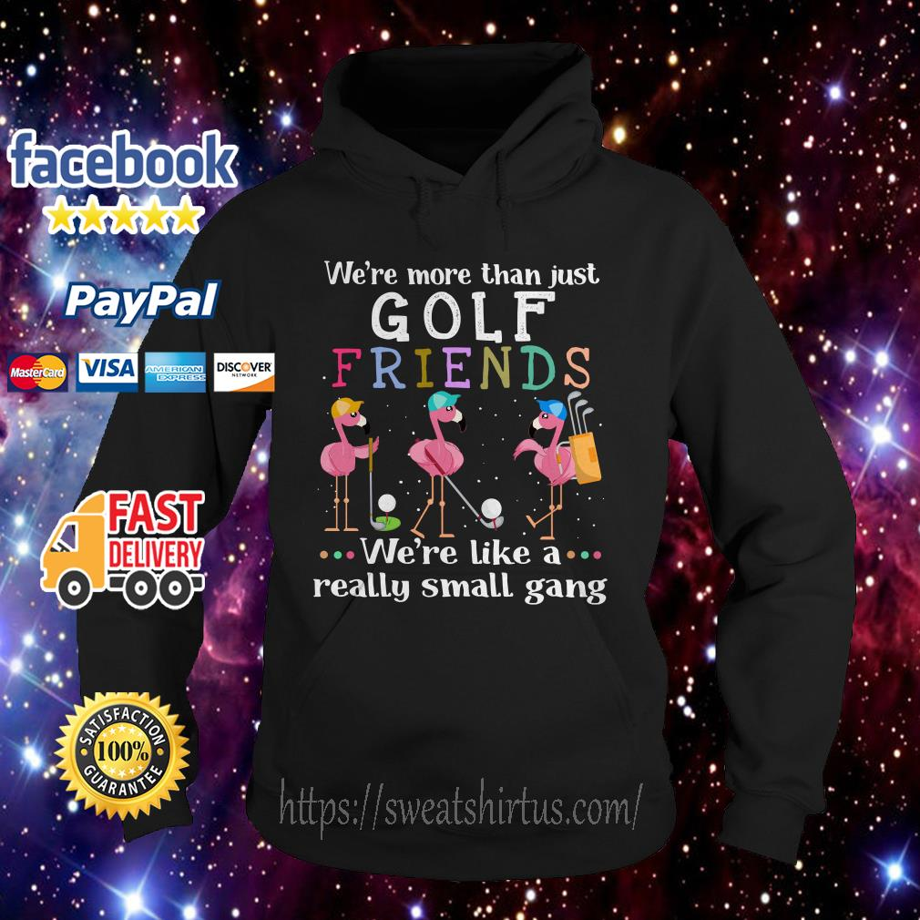 Flamingos we're more than just golf friends we're like a really small gang Hoodie