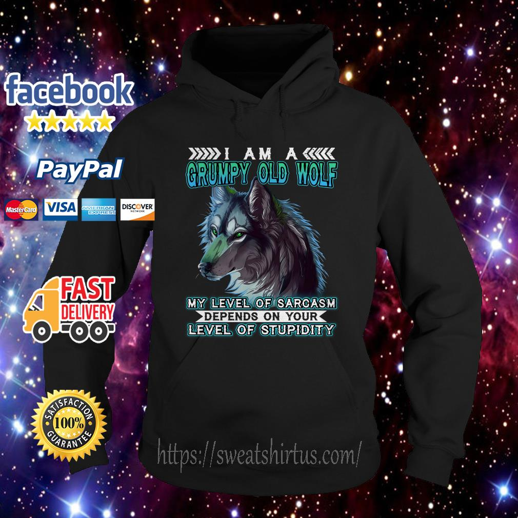 I am a grumpy old wolf my level of sarcasm depends on your level of Stupidity Hoodie