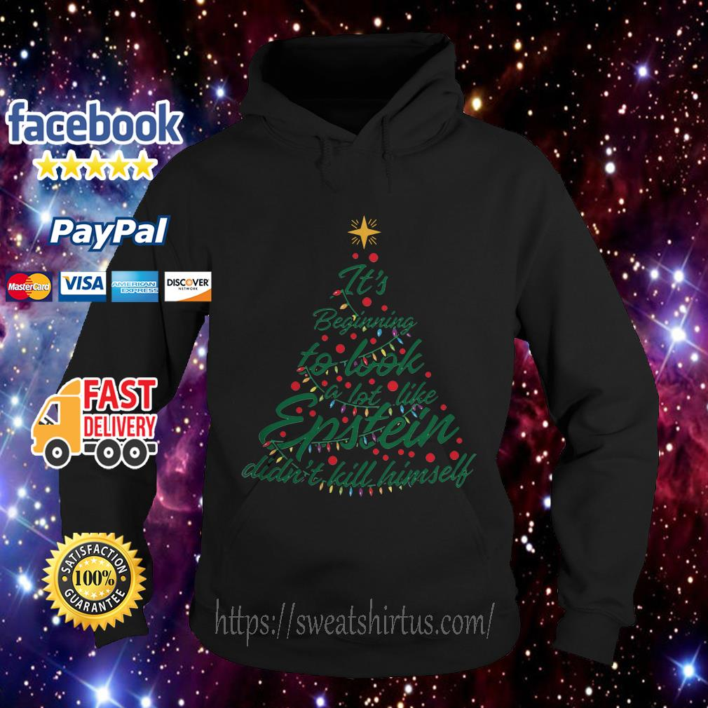 It's beginning to look a lot like Epstein didn't kill himself Christmas Hoodie